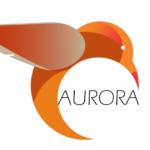 Más información sobre Aurora: Desarrollo y validación de una aplicación móvil para la evaluación y mejora de...