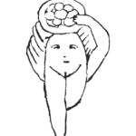 Más información sobre Libros de Baubo, estudios sobre la risa